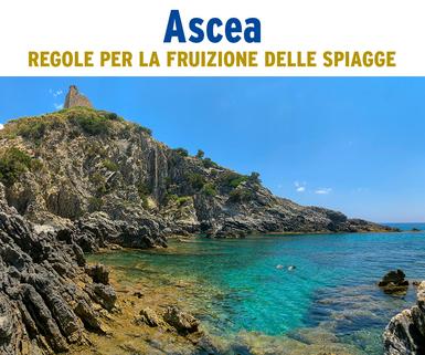 ascea_spiagge_02.jpg